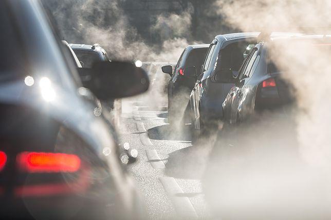 Paryż i Londyn sklasyfikują auta pod względem emisji spalin
