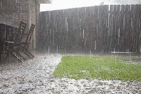 Jak zachować się w czasie burzy? Nie chowaj się pod drzewem