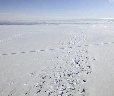 Złe prognozy dla lodu morskiego