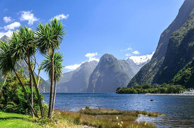 Różnorodność krajobrazów – od tropikalnych plaż z palmami, przez deszczowe lasy do alpejskich łąk wydaje się sprzyjać różnorodności gatunkowej – bogactwu flory i fauny