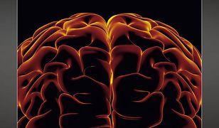 Nieświadomy mózg. Jak to, co dzieje się za progiem świadomości, wpływa na nasze życie