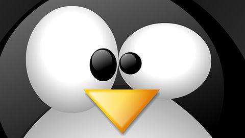 Szkodnik Mayhem tworzy botnet atakując serwery oparte na Linuksie i FreeBSD