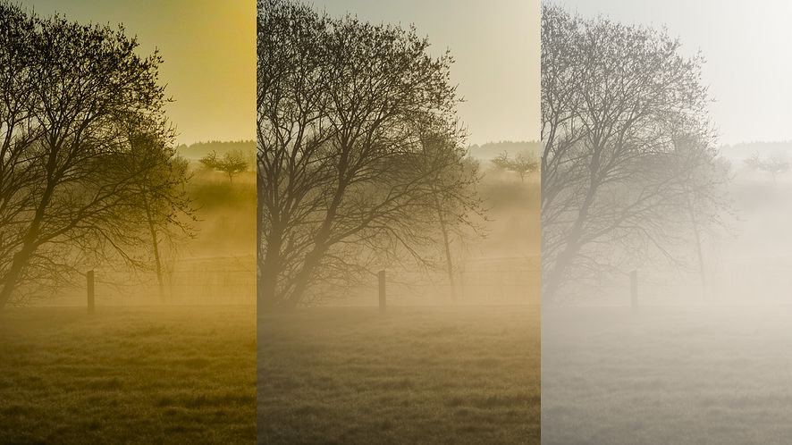 Adobe Lightroom CC w pełni kontroluje mgłę
