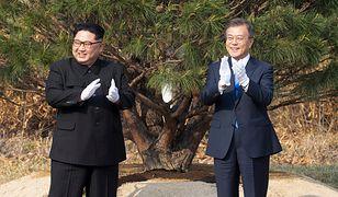 Przywódcy Korei Północnej i Południowej wspólnie zasadzili drzewko