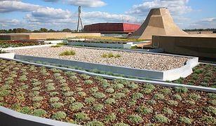 Ogród na dachu Centrum Nauki Kopernik [ZDJĘCIA]