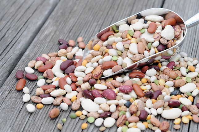 Fasola – odmiany, wartości odżywcze, właściwości, zastosowanie, przepisy