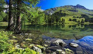 Zakaz fotografowania w szwajcarskim Bergun