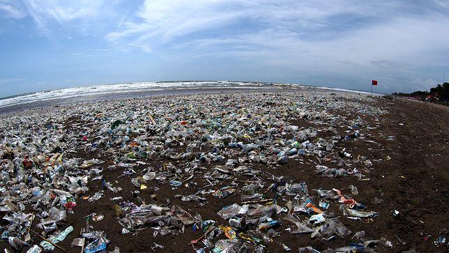 Rząd Indonezji zapowiedział, że będzie przeznaczać rocznie miliard dolarów na sprzątanie wybrzeża