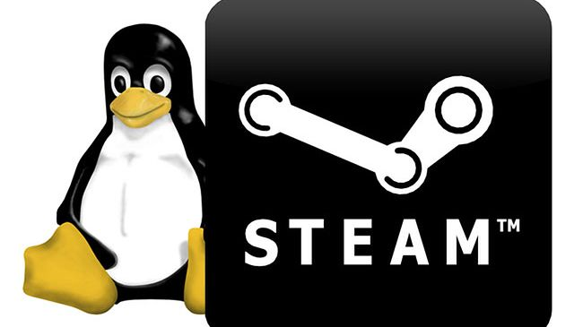 Gwiazdkowy prezent dla użytkowników Linuksa: beta serwisu Steam dostępna dla wszystkich