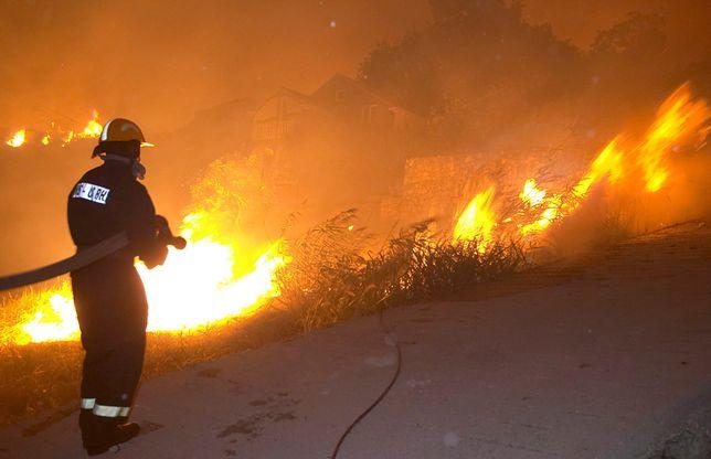 Chorwacja. Ponad 200 strażaków walczy z pożarami lasów na południu kraju