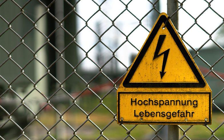 Atak groźnej choroby. Niemcy budują płot na granicy z Polską