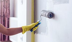 Poznaj najmodniejsze kolory ścian