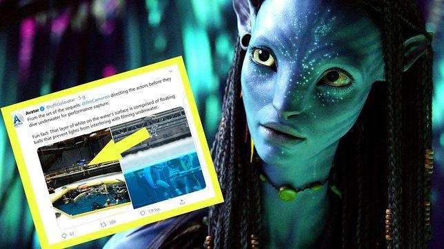 """Nowe zdjęcia z """"Avatara 2""""! Zdradzają ważny element scenariusza"""
