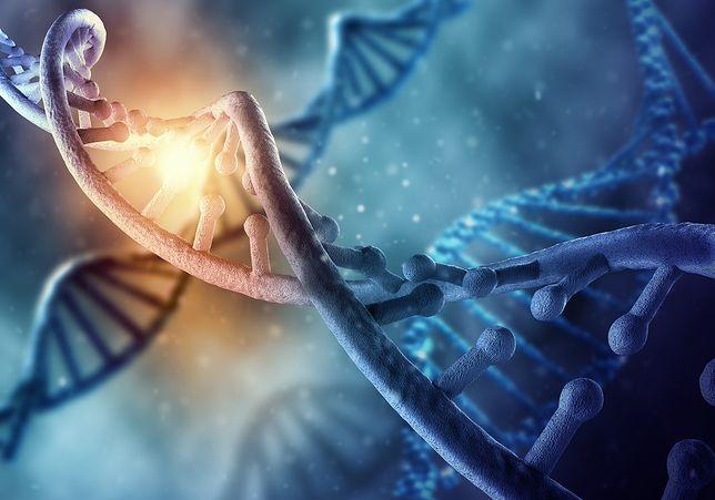 Nowy sposób edycji genów może pomóc zwalczyć wiele chorób. Jednak rozwój technologii edycji DNA powoduje też dużo kontrowersji.