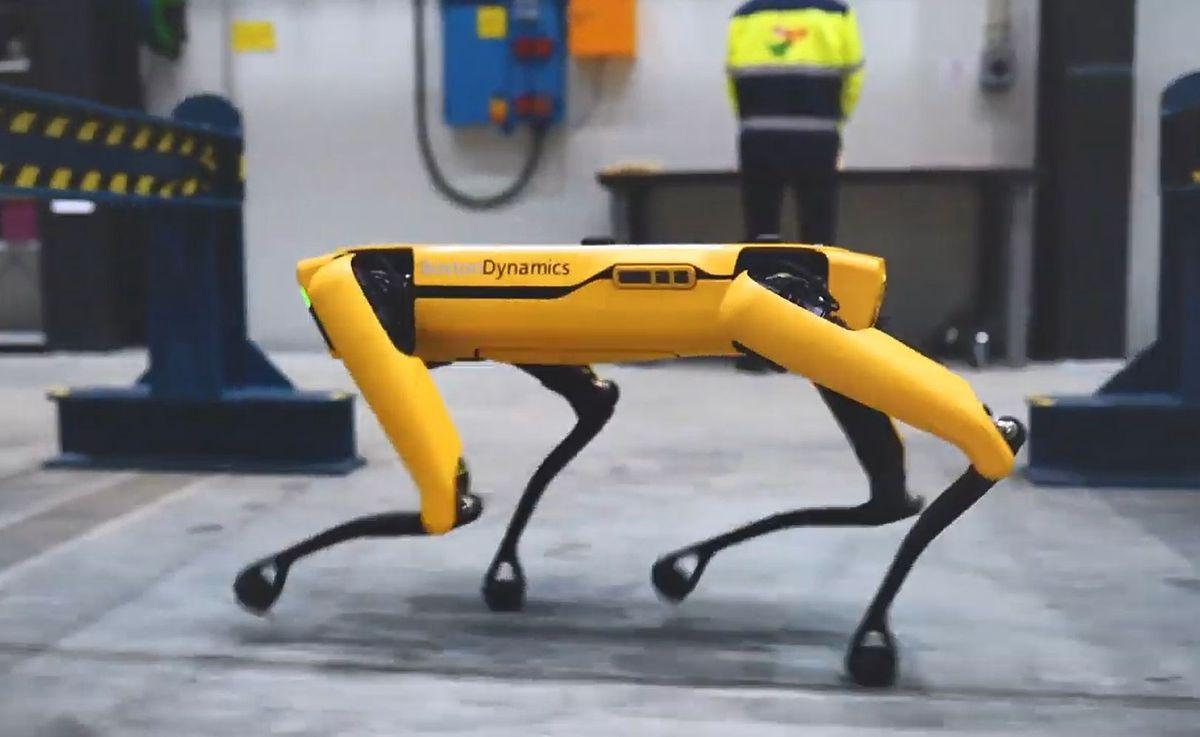 Robot Spot. Pierwszy, którego można kupić