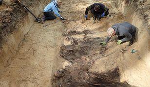 Archeolodzy ze stowarzyszenia POMOST