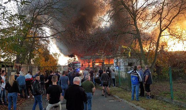 Pożar w Bytomiu. Płoną odpady w byłych zakładach Jopek. Głos zabrał nawet prezydent miasta Mariusz Wołosz