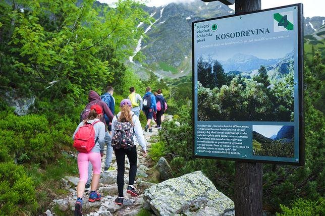 Sezon w pełni jest nie tylko w popularnych miejscowościach górskich w Polsce. Nasi rodacy równie tłumnie oblegają słowacką stronę Tatr