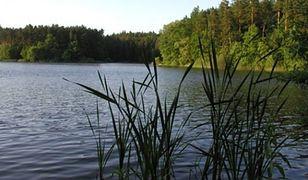 Zwłoki wyłowione w Jeziorku Czerniakowskim