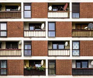 Ośmiu sąsiadów, którzy mogą doprowadzić cię do szału
