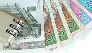 Euro w Polsce? Musimy uzbroić się w cierpliwość