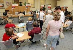 Rynek pracy w Polsce. Staże w urzędach niczego nie uczą?