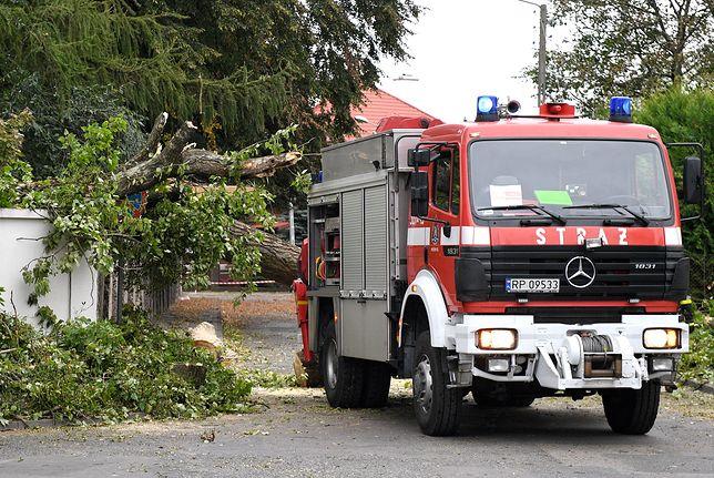 Pogoda. W miejscowości Kujawy silny wiatr spowodował zwarcie w oborze. Padło 16 krów