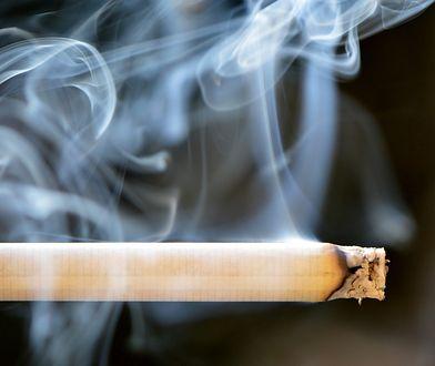 Mazowsze. Akcja Straży Granicznej. Zlikwidowano fabrykę nielegalnych papierosów