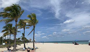 Z Chicago pod palmy. Amerykańska Polonia zmienia adres na Florydę