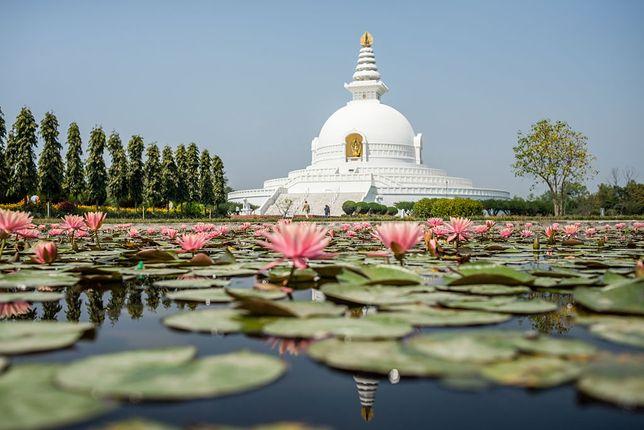 Pagoda Światowego Pokoju w Lumbini