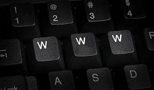 Cyfrowa apokalipsa. Co by się stało, gdyby internet nagle przestał działać?