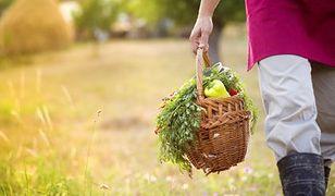 Polacy coraz częściej kupują ekologiczną żywność. Popyt rośnie w tempie ok. 20 proc. rocznie