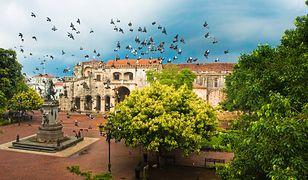 Ptaki przelatujące nad Parkiem Kolumba w Santo Domingo