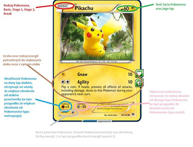 Podstawowe informacje o karcie Pokemona