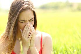 Alergia dróg oddechowych