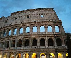 Dzicy lokatorzy w Koloseum. Nie uwierzysz, kto tam zamieszkał