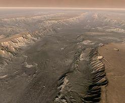 Niespotykane dotąd dane. Naukowcy zajrzeli w głąb Marsa