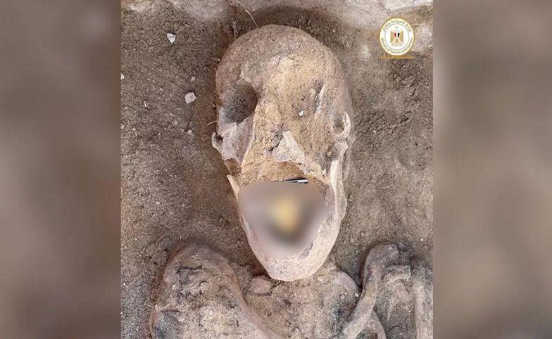 Egipt. Naukowcy snują teorie. Niesamowite odkrycie w jamie ustnej mumii