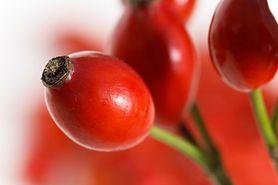 Dzika róża - najlepsze, naturalne źródło witaminy C (WIDEO)