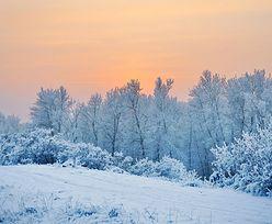 Niebezpieczna pogoda. Mróz i zamiecie śnieżne. IMGW ostrzega
