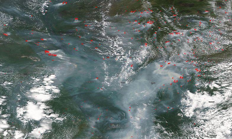 Kłęby dymu na olbrzymim obszarze. NASA pokazuje, skąd pochodzą