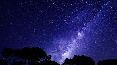 Perseidy 2020. Znajdź spadające gwiazdy na niebie z pomocą aplikacji