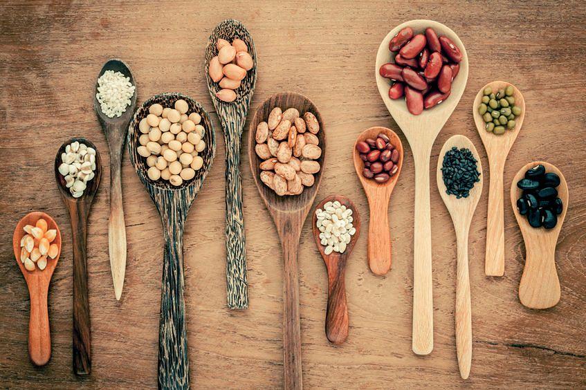 Lektyny - podstępne białka