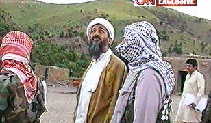 Bliski współpracownik bin Ladena trafił za kratki