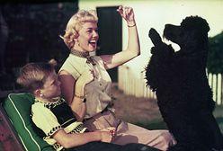 Walka o spadek po Doris Day. Wszystko zapisała swoim psom