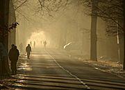 Smog w woj. śląskim. Dopuszczalne stężenia wyższe o 400 proc.