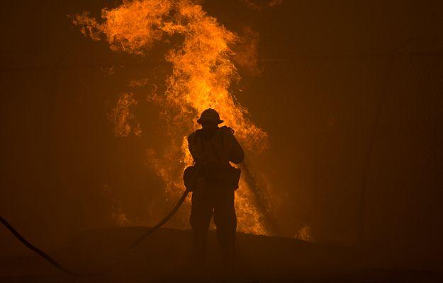 Hiszpania: pożar lasu w pobliżu miasta Alicante, ewakuowano 1000 osób