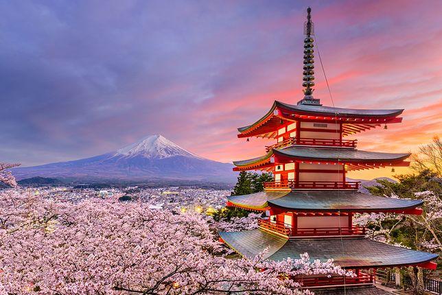 Japonia jest coraz bardziej popularna wśród turystów z Polski