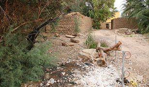 Pozostałości świątyni Totmesa I w Gurna.