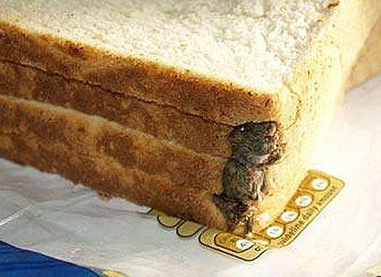 Nie mógł uwierzyć oczom - zobacz, co znalazł w chlebie